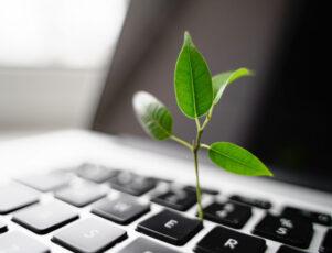brote verde creciendo en el teclado de un ordenador portátil